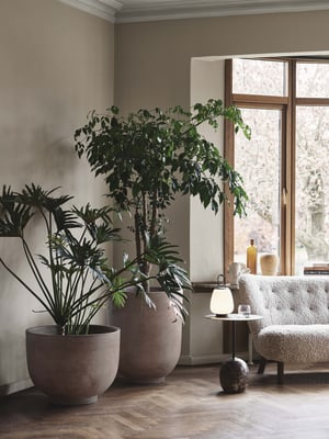 Puut ja suurikokoiset kasvittarvitsevat tarpeeksi suuren ruukun. Tanskalaisen &Traditionin mallistossa on useita suuria ja veistoksellisia ruukkuja, jotka sopivat myös ulkokäyttöön, alk. 224e.