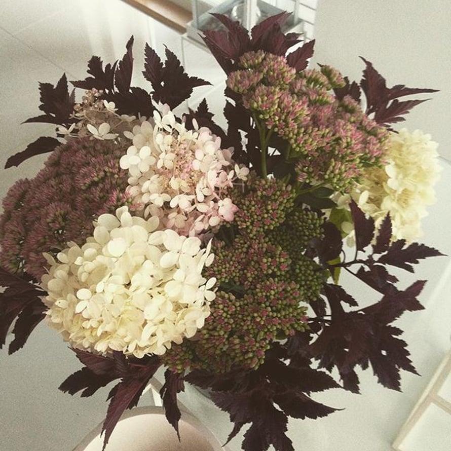 @papuli14 teki kimpun oman pihan kukista.