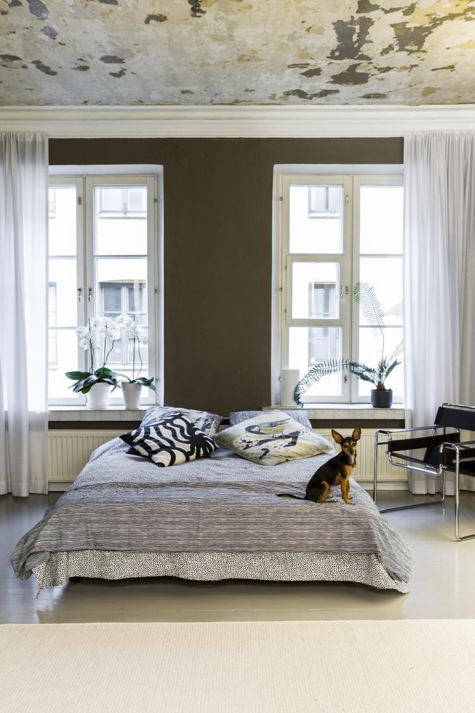 Kodin sydän on pyörillä oleva sänky, jota on helppo siirrellä. Sen Teemu jakaa Australiasta tuomansa kuusivuotiaan prahanrottakoira Jasperin kanssa. Valkoinen villamatto tuo huoneeseen valoa.