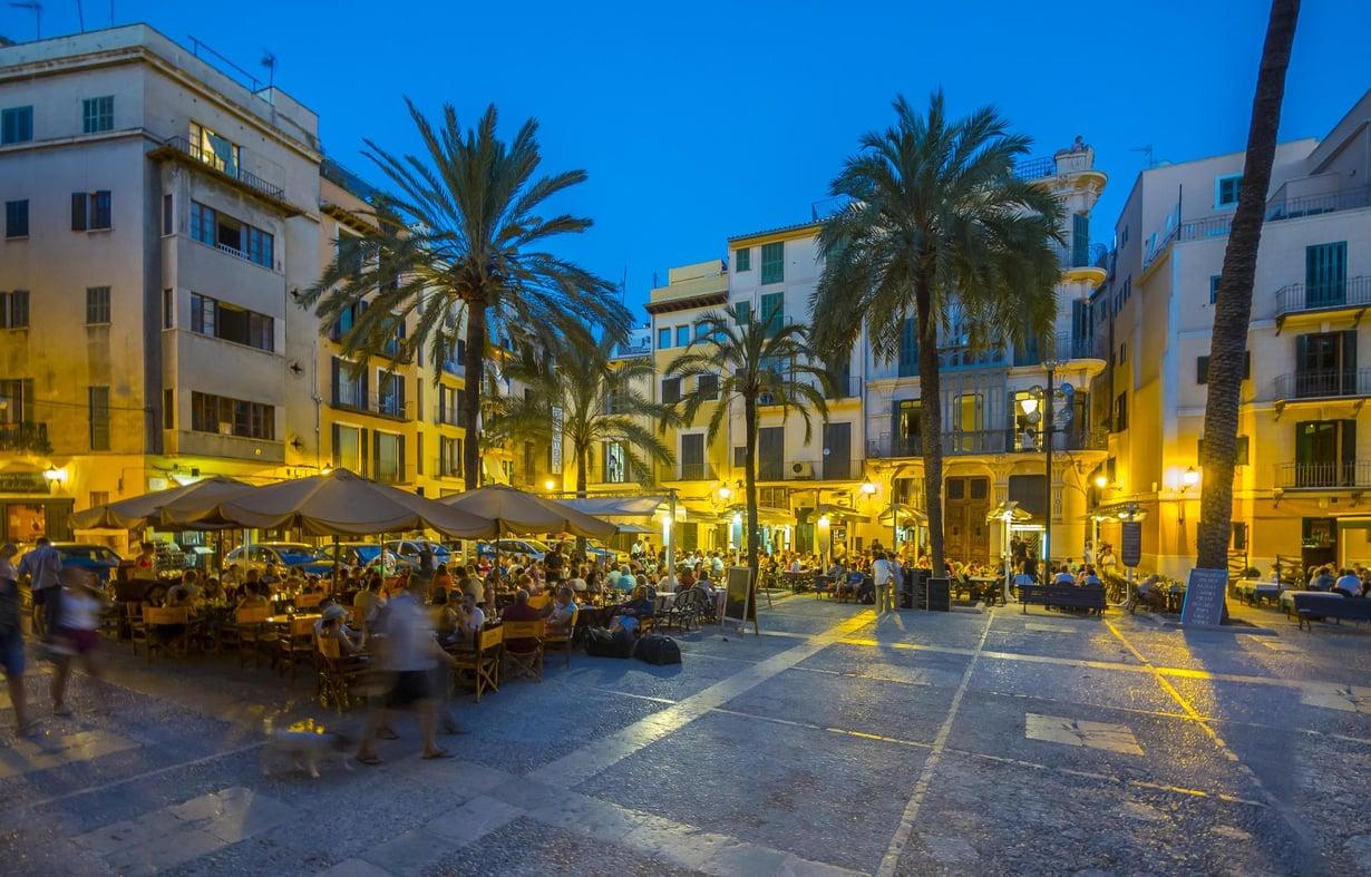 Katedraali vartioi Palman vanhaa kaupunkia.