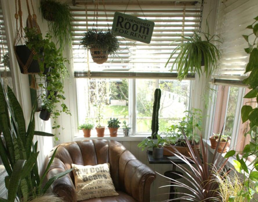 <p><p>Nyt porstuassa voi ihan oikeasti rentoutua, uppoutua hyvään puutarhakirjaan ja unelmoida olevansa jossain kaukomaassa, lämpimässä tropiikissa. </p></p>