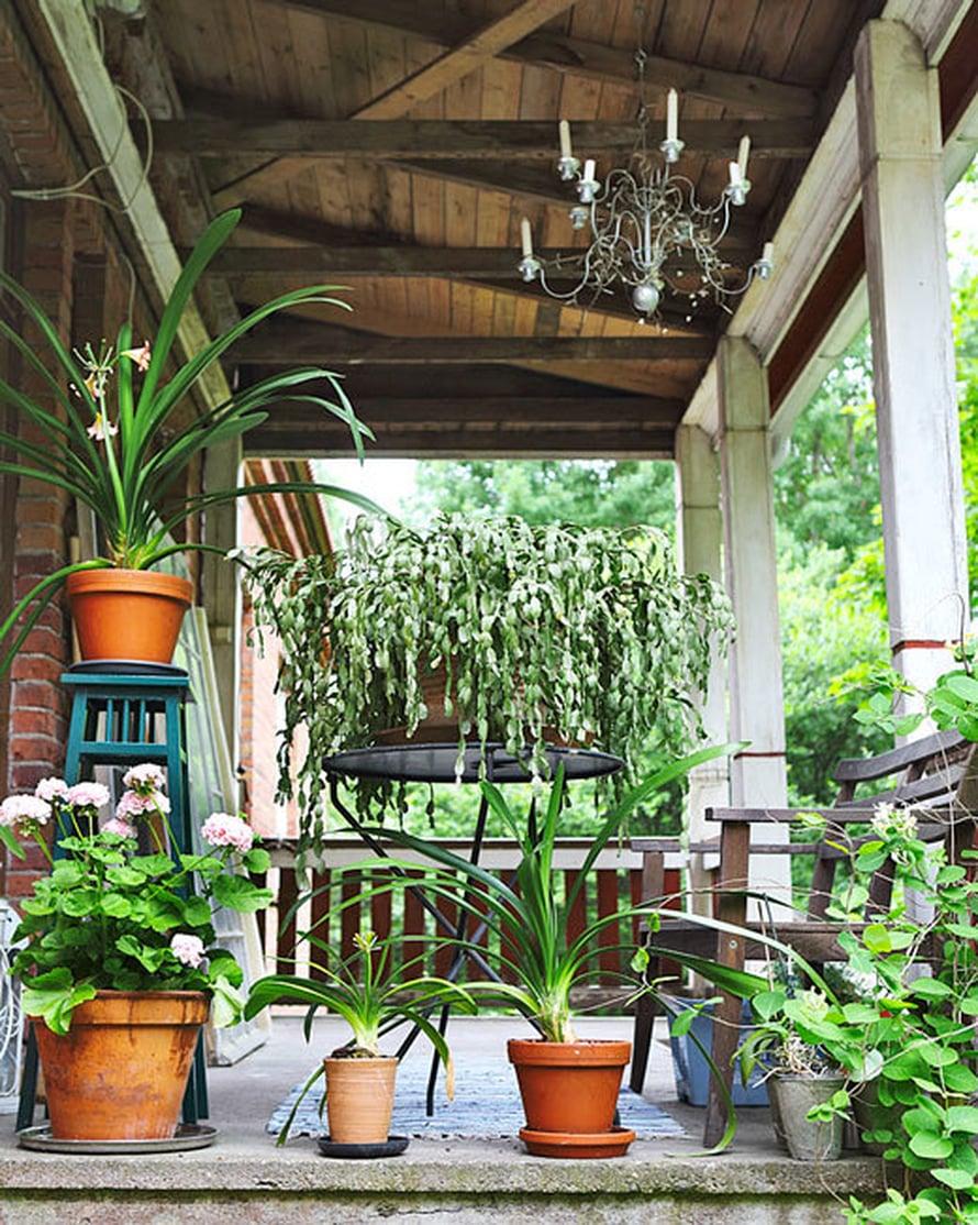 <p><p>Toinen eli kadunpuoleinen kuisti on omistettu pitkäikäisille ja kestäville ruukkukasveille, jotka viihtyvät koko kesän ulkona.</p></p>